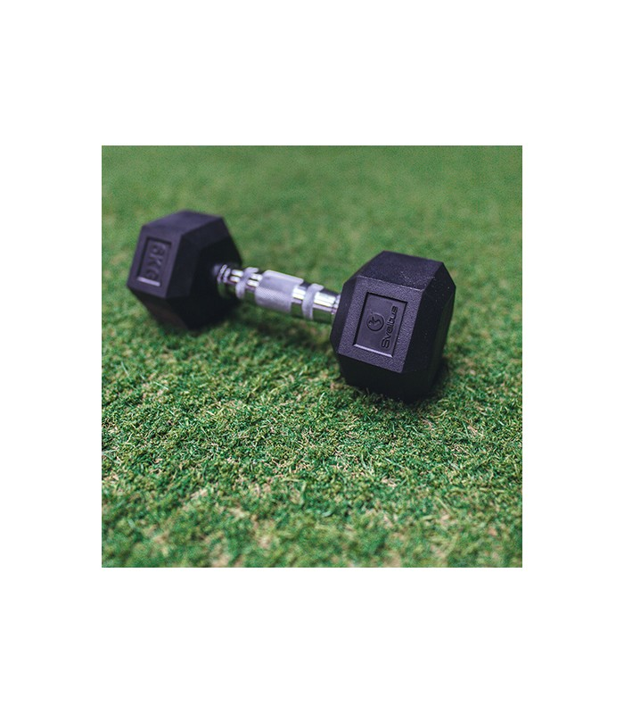 Hexagonal dumbbell 20 kg x1
