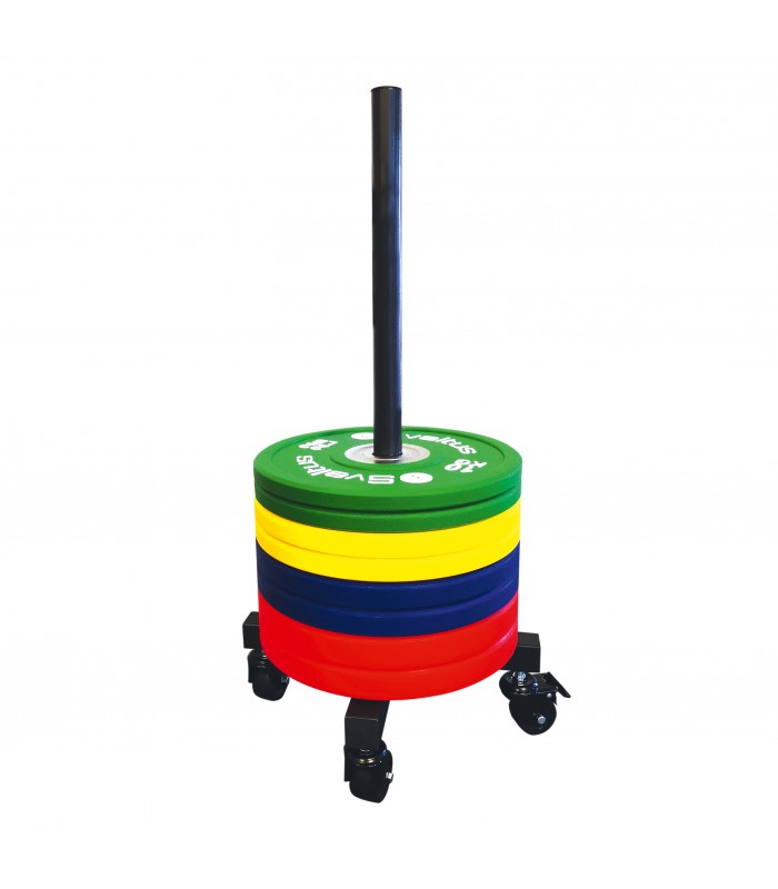 Olympic discs stacker with castors